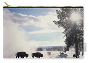 American Bison In Winter Carry-all Pouch by Tim Fitzharris