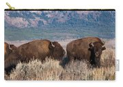 American Bison Trio Carry-all Pouch
