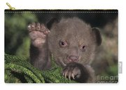 American Black Bear Cub Wildlife Rescue Carry-all Pouch