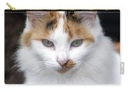 American Calico Cat Portrait Carry-all Pouch