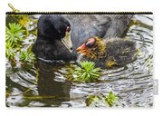 American Coot And Chick Carry-all Pouch