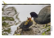American Coot Feeding Chick Carry-all Pouch