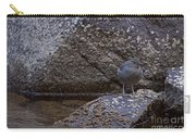 American Dipper   #2488 Carry-all Pouch