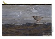 American Dipper   #5851 Carry-all Pouch