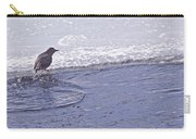 American Dipper   #8163 Carry-all Pouch