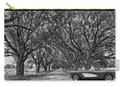 American Dream Drive 2 Bw Carry-all Pouch