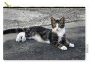 American Grey Tiger Stripe Kitten Portrait Carry-all Pouch