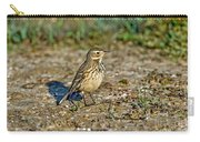 American Pipit Carry-all Pouch