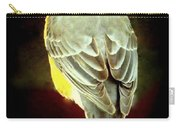 American Robin Carry-all Pouch