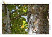 American Sycamore Carry-all Pouch