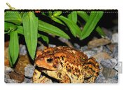 American Toad Carry-all Pouch