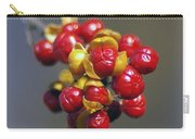 American Winterberry Carry-all Pouch