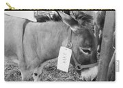 Amish Donkey At Action Carry-all Pouch