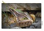 Amphibious Resident Carry-all Pouch