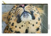 Amure Leopard Carry-all Pouch