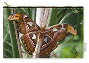An Atlas Moth  Carry-all Pouch