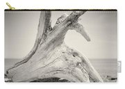 Analog Photography - Driftwood Carry-all Pouch