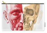 Anatomy Of A Male Human Head, With Half Carry-all Pouch by Leonello Calvetti