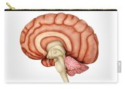 Anatomy Of Human Brain, Side View Carry-all Pouch