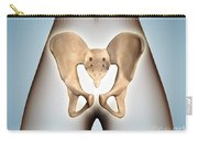 Anatomy Of Pelvic Bone On Female Body Carry-all Pouch