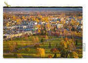 Anchorage Landscape Carry-all Pouch