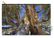 Ancient Bristlecone Carry-all Pouch