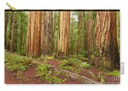 Ancient Forest - The Massive Giant Redwoods Sequoia Sempervirens In Redwood National Park. Carry-all Pouch by Jamie Pham