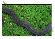 Anerythristic Red Belly Snake Carry-all Pouch