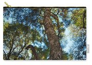 Angeles Sun -beautiful Tree With Sunburst In Angeles National Forest In The San Gabriel Mountails Carry-all Pouch