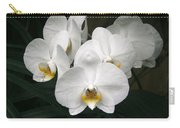 Angelic Delight Carry-all Pouch