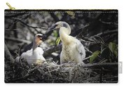 Anhinga Chicks Carry-all Pouch