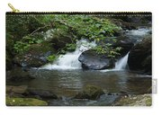 Anna Ruby Falls 13 Carry-all Pouch