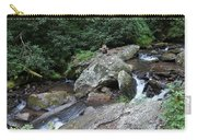 Anna Ruby Falls 16 Carry-all Pouch
