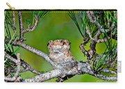 Annas Hummingbird Nest Carry-all Pouch
