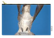 Anna's Hummingbird Tail Display Carry-all Pouch