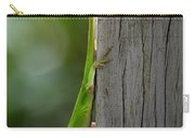 Anole Carry-all Pouch