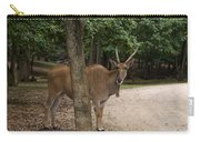 Antelope Behind A Tree Carry-all Pouch