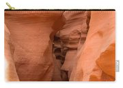 Antelope Canyon 14 Carry-all Pouch