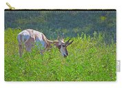 Antelope Near Wildlife Loop Road In Custer State Park-south Dakota- Carry-all Pouch
