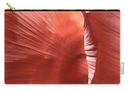 Antelope Passage Carry-all Pouch