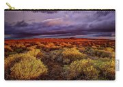 Antelope Valley Carry-all Pouch