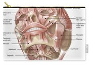 Anterior Neck And Facial Muscles Carry-all Pouch
