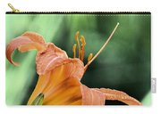 Anthers Aglow Carry-all Pouch