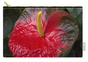 Anthurium Flamingo Flower Beauty Queen Fine Art Photography Print Carry-all Pouch