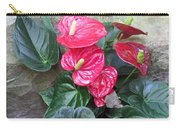 Anthurium Red Carry-all Pouch