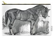 Antique Horse Drawing Carry-all Pouch