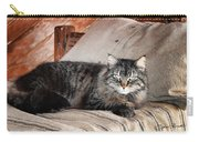 Antiquity Kitty Carry-all Pouch