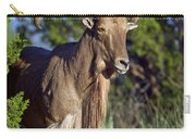 Aoudad Sheep  Carry-all Pouch