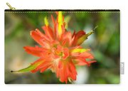 Apex Of Indian Paintbrush Carry-all Pouch