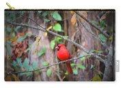 Appalachian Cardinal Carry-all Pouch